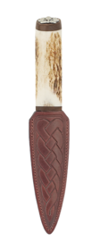 Scottish Staghorn Thistle Sgian Dubh With Walnut