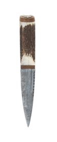 Staghorn Damascus Sgian Dubh Walnut With Stag