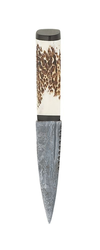 Staghorn Damascus Sgian Dubh With Blackwood